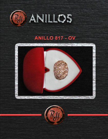 [1600x1200] ANILLO 817 OV