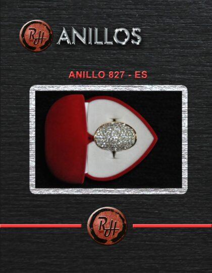 [1600x1200] ANILLO 827 ES