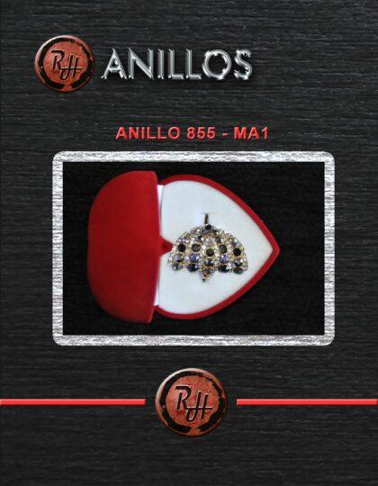 [1600x1200] ANILLO 855 MA1