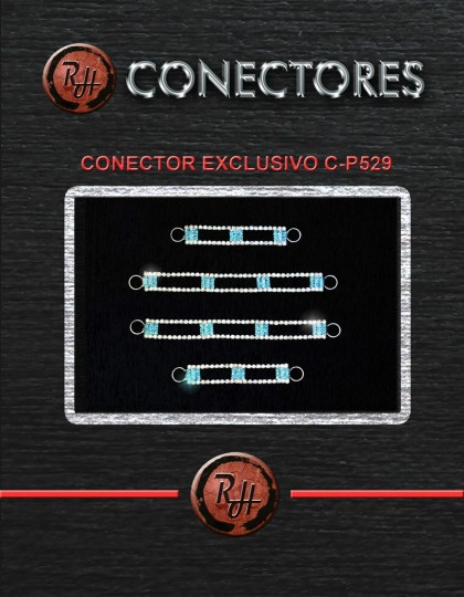 CONECTOR EXCLUSIVO C-P529 [1600x1200]