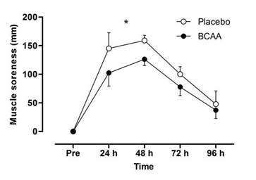 Figura 1. Muscle soreness o Daño muscular.